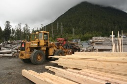 Local Logging Mill