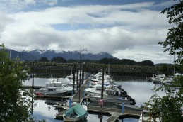 Sitka Harbor Morning